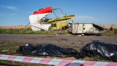 Malaysia Airlines Flug MH17 Update: Separatisten bestreiten die Black Box entfernt zu haben (Videos)