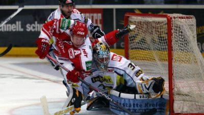 Live-Stream Eishockey Bundesliga 9. Spieltag: Kölner Haie vs. Krefeld Pinguine, Live-Übertragung auf Laola TV