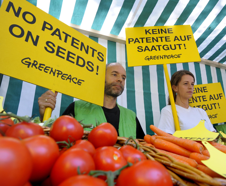 40 Pflanzen-Patente für Monsanto und Syngenta