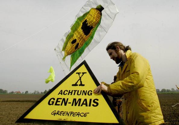 Rückschlag für Monsanto: Niederlande verbieten Privatnutzung von Glyphosat