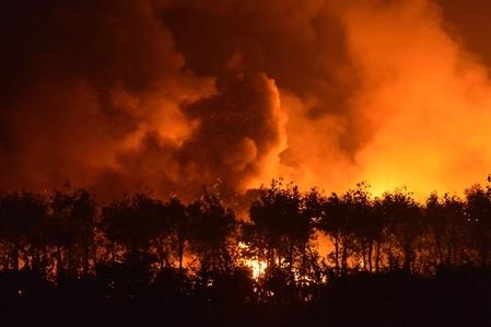 Bei der Explosion von Tianjin verbrannten mindestens 700 Tonnen hochgiftiges Cyanid. Auch andere Gefahrenstofflager explodierten. Foto: Getty Images
