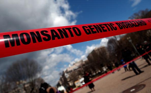 Klagen gegen Monsanto – Umweltverschmutzungen durch PCB