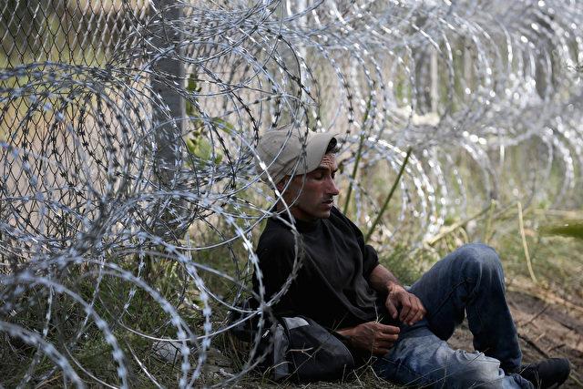 Migrant lehnt an ungarischem Grenzzaun Foto: Christopher Furlong/Getty Images