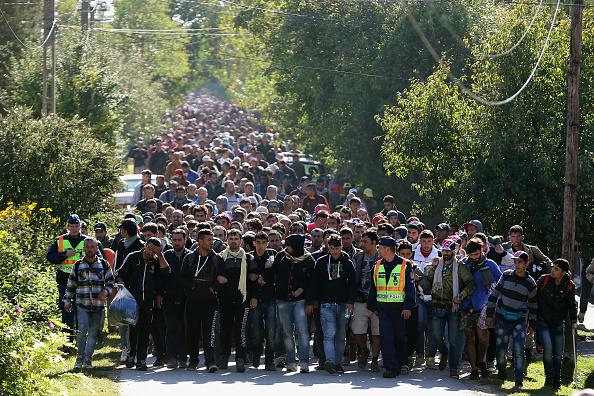"""96 Prozent """"unzufrieden"""" mit Merkels Flüchtlingspolitik: 140.000 Focus-Leser stimmten ab"""