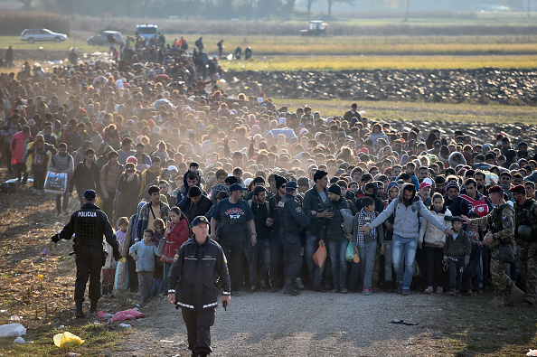 Noch unterwegs nach Spielfeld: Migranten betreten aus Kroatien kommend am 26. Oktober slowenisches Gebiet. Foto: Jeff J Mitchell/Getty Images