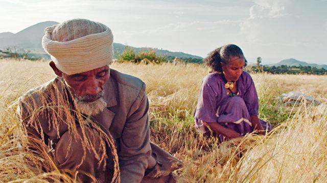 "Genehmigt durch ""Landraub"": Athiopien"