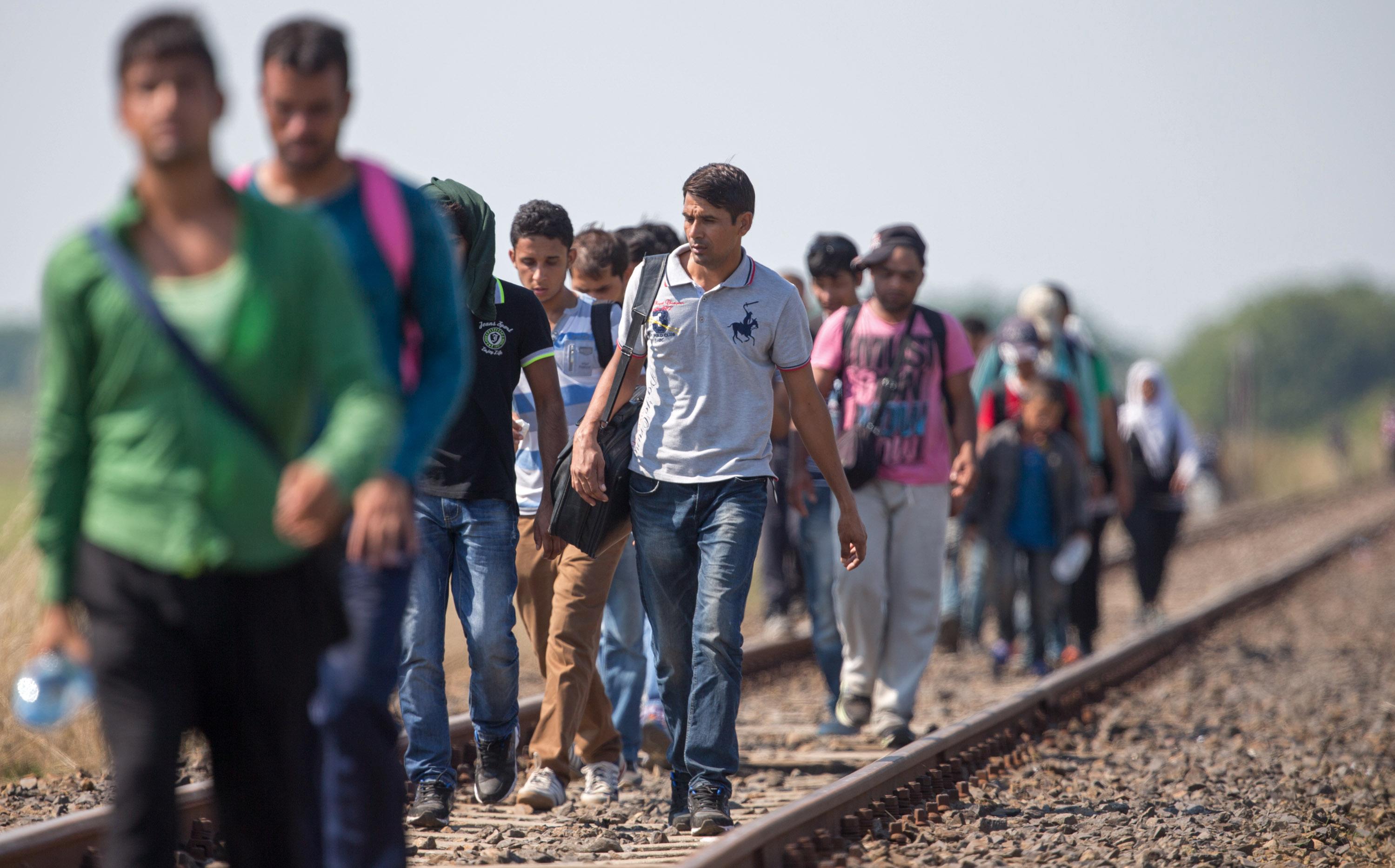 Eingeschleuste IS-Kämpfer: Österreichs Liberale Muslime warnen vor weiterem Terror