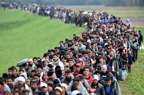Migranten werden von der Polizei in Slowenien durch die Felder eskortiert. Foto: Jeff J Mitchell / Getty Images