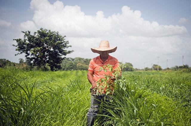 Farmer in Venezuela Foto: LEO RAMIREZ/AFP/Getty Images