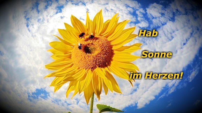 Gedicht Des Tages Hab Sonne Im Herzen Und Alles Wird Gut