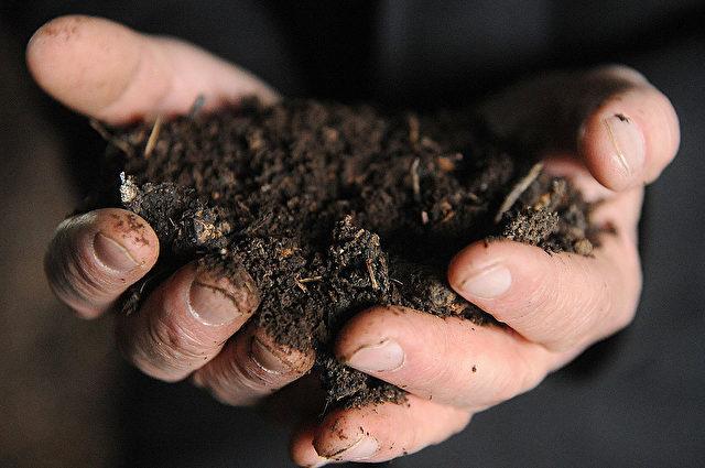 Frischen Kompost als Kompost-Tee ansetzen Foto: REMY GABALDA/AFP/Getty Images