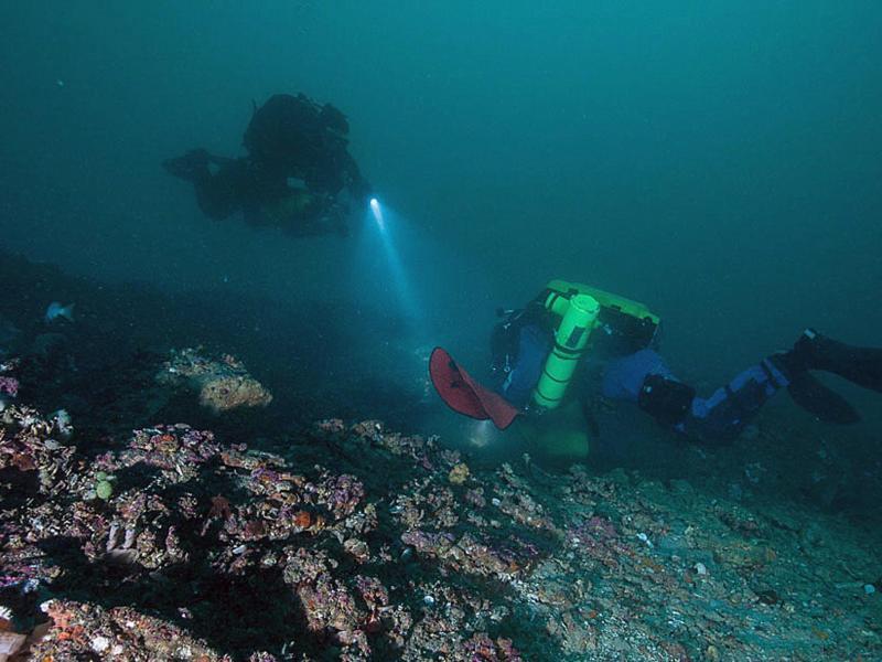 Bakterienfund unter dem Meeresgrund rollt die Suche nach Leben auf dem Mars neu auf