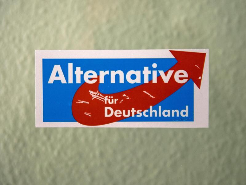 AfD bald auch in Brandenburg ganz vorn?