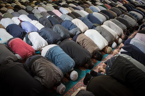 Gläubige Muslime beim Gebet in einer Moschee Foto: Rob Stothard/Getty Images