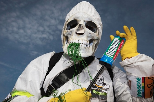 Schwerer Schlag für Monsanto: Kalifornien setzt Glyphosat auf Liste potentiell krebserregender Stoffe