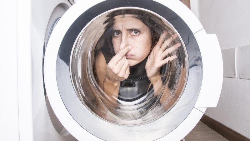 Ohne viel Chemie: Dieser Trick vertreibt Schimmel aus der Waschmaschine