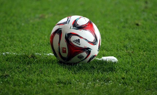 Fußball-EM: Belgien schlägt Irland