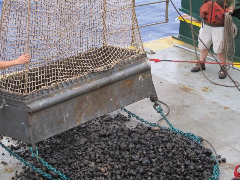 Forscher entdecken wertvolle Manganknollen-Felder im Pazifik