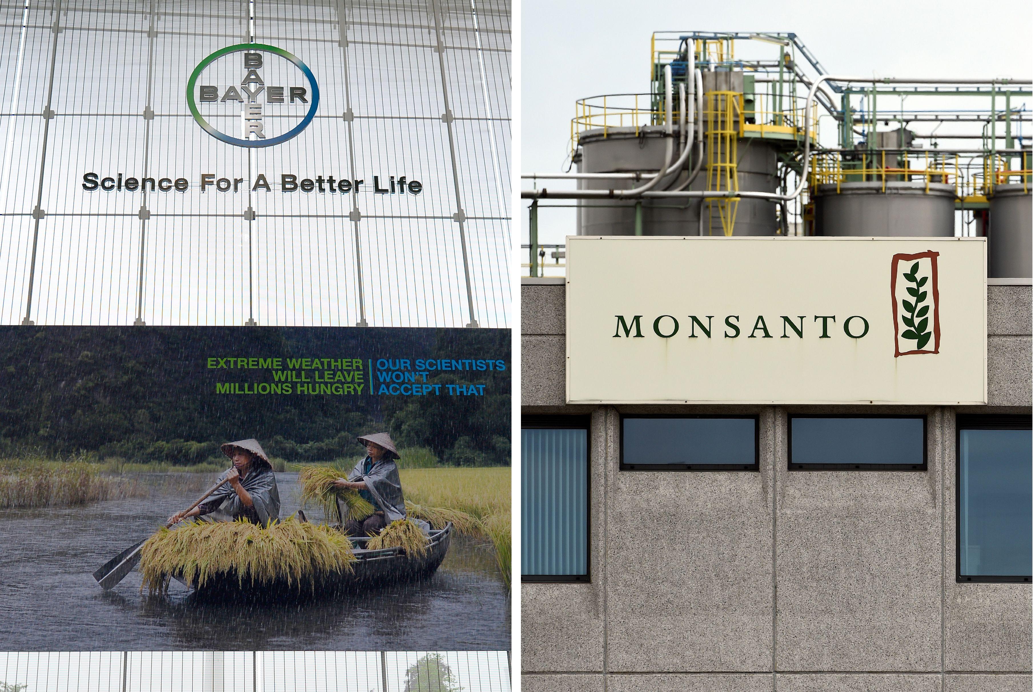 Vorsorgeprinzip ausgehebelt: EU genehmigt drei Sorten Gen-Soja von Monsanto und Bayer