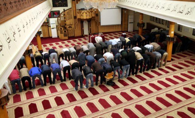 Gläubige Muslime beim Gebet in einer Berliner Moschee Foto: über dts Nachrichtenagentur