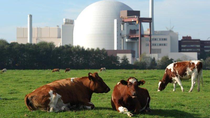 Bund zahlt für deutschen Atomausstieg 2,4 Milliarden Euro an Energieversorger