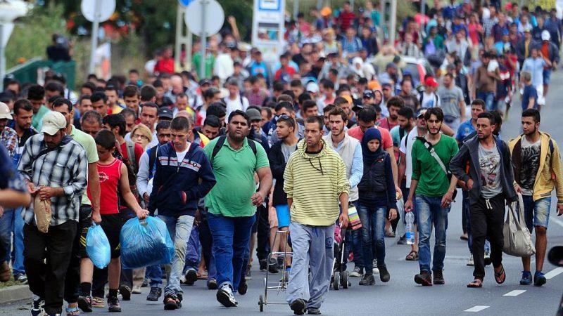 Hunderte Flüchtlinge und Migranten auf dem Weg von Ungarn nach Österreich. 5. September 2015. Foto: ATTILA KISBENEDEK/AFP/Getty Images
