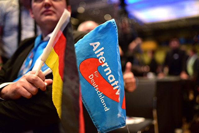 AfD und Deutschland Fahne. Foto: Thomas Lohnes/Getty Images