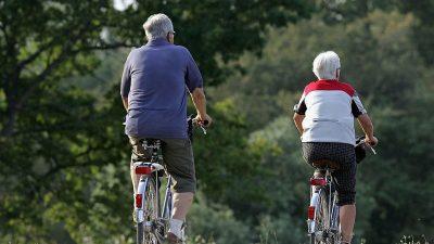 Das Rentendilemma: Wahrhaftig mehr als nur ein Grundrentengedöns!