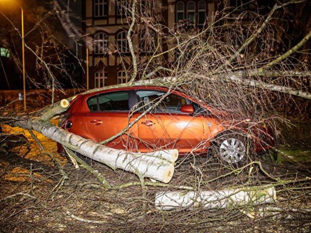 Ein umgestürzter Baum liegt in Wiesbaden auf einem Auto. Foto: Wiesbaden112 GbR/dpa