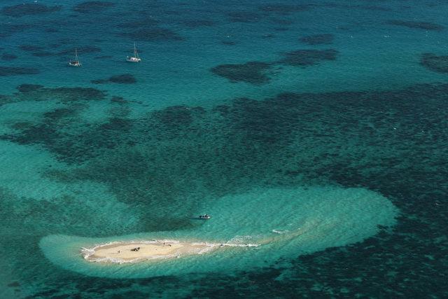 Great Barrier Reef Foto: Mark Kolbe/Getty Images