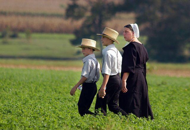 Mitglieder der Amisch-Glaubensgemeinschaft in den USA. Foto: William Thomas Cain/Getty Images