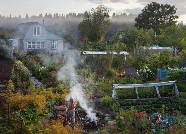 """40% der russischen Nahrung kommt aus """"Dacha-Gärten"""" Foto: naturalhomes.org/russian dacha"""
