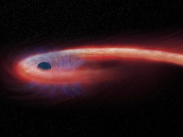 Die von der NASA bereitgestellte künstlerische Darstellung zeigt einen Stern, der von einem schwarzen Loch geschluckt wird und dabei einen Schweif aus Röntgenstrahlen, dargestellt in rot, abgibt.Foto: M. Weiss/NASA/Chandra X-ray Observatory/dpa