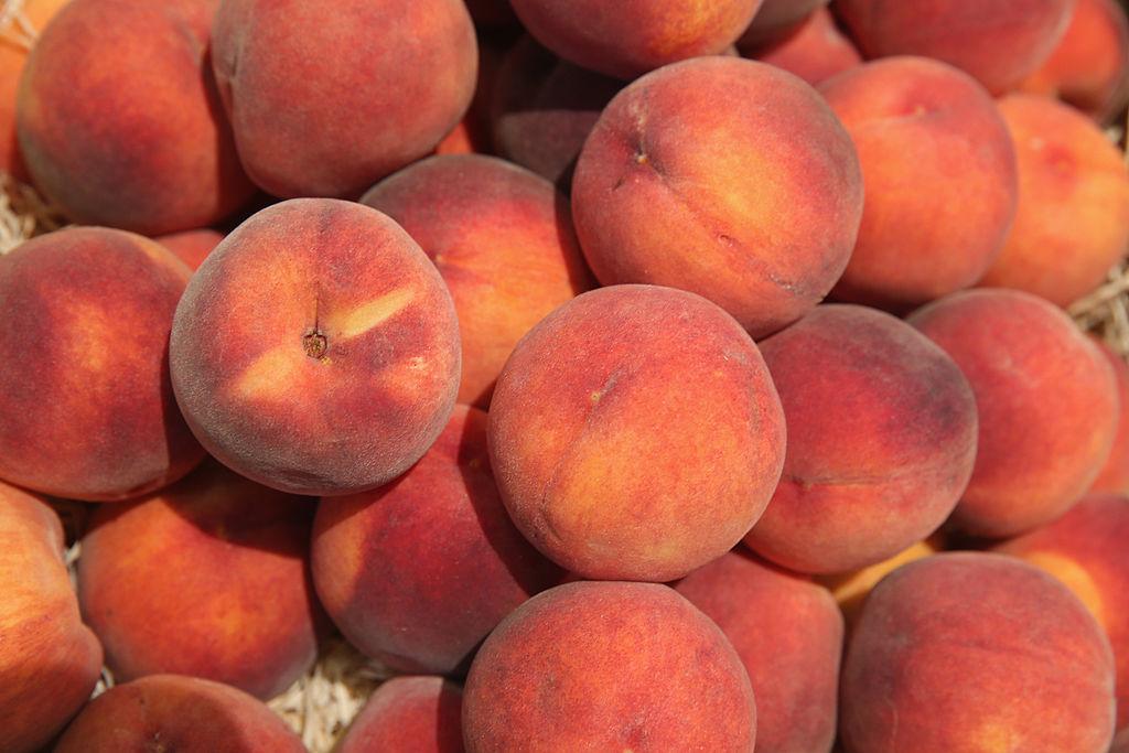 Lokführer in Tunesien stoppt Zug und kauft Obst