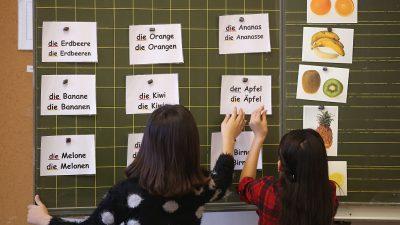 Migrantenanteil in Deutschland bei fast 23 Prozent – Asylbewerber in Statistik nicht erfasst