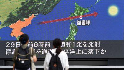 """Tillerson: Es gibt """"Kommunikationskanäle nach Pjöngjang"""" – Verhandlungen über Atomprogramm laufen"""
