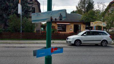 Plakatzerstörung: AfD bietet 50 Euro für Bürger, die Videoüberwachung installieren