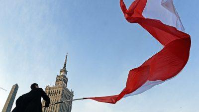 Polen besorgt über Demokratie in Deutschland: Journalist illustriert Muslimen-NSDAP-Verbindungen – wird angezeigt und verurteilt