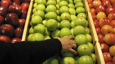 Privatgeheimdienst: IS will Lebensmittel in Europas Supermärkten vergiften