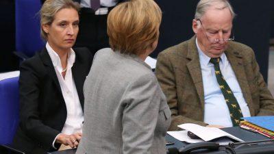"""AfD fordert Rückzug von Merkel – Gauland zum Scheitern der Jamaika-Sondierungen: """"AfD wirkt"""""""