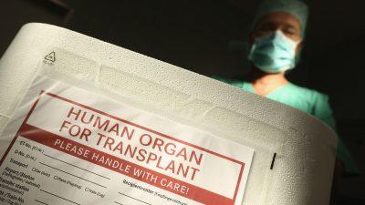 Schweiz: Jeder soll zum Organspender werden – außer er lehnt das zu Lebzeiten ab