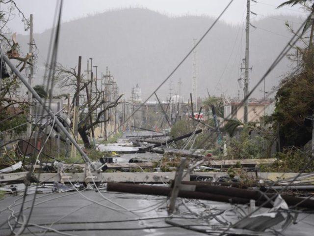 Zerstörte Stromleitungen in Puerto Rico nach dem Durchzug von Hurrikan «Maria». Foto: Carlos Giusti/dpa