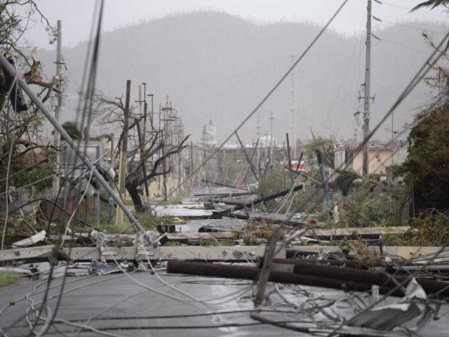Zerstörte Stromleitungen in Humacao: Das Stromnetz von Puerto Rico war zeitweise fast völlig zusammengebrochenm. Foto:Carlos Giusti/dpa