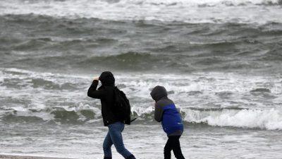 Sturmwarnung: Kein Fährverkehr zwischen Rostock und Gedser – Schneefallgrenze sinkt