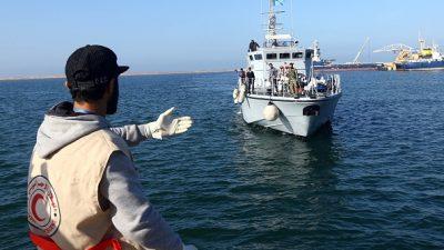 Grünen-Chefin begrüßt Evakuierung von Flüchtlingen aus Libyen