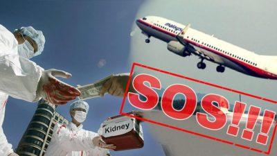 Was hat das Verschwinden des Flugs MH370 mit dem Organraub in China zu tun?