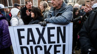 AfD in Cottbus bereits auf Platz 1 – weit vor CDU, Linke und SPD