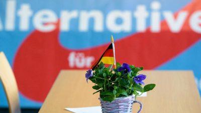 Umfrage: AfD könnte bundesweit 20 Prozent erreichen