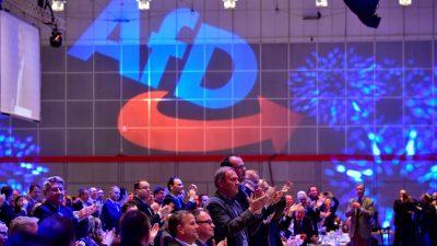 AfD-Vorstand einigt sich auf Desiderius-Erasmus-Stiftung als parteinahe Stiftung