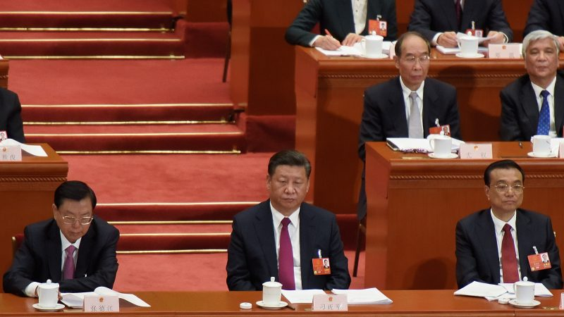 Xi Jinping, Nationaler Volkskongress